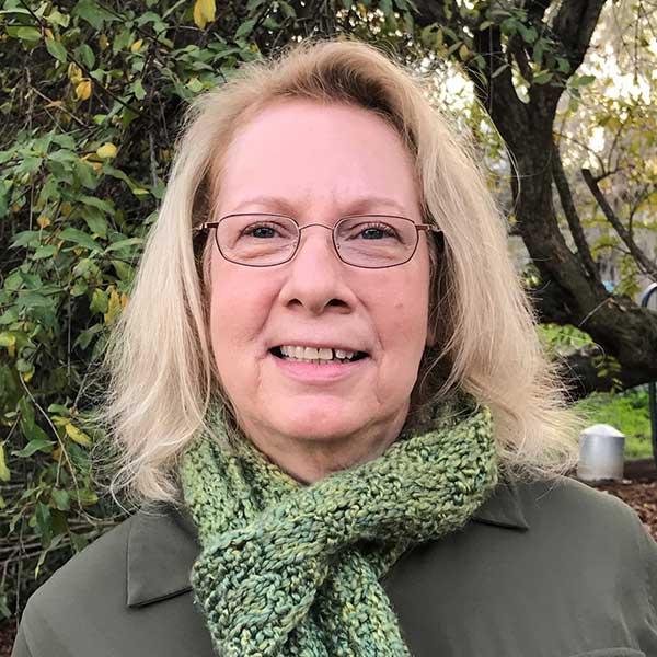Lynne King joined Cool Davis as Board Treasurer in 2016.