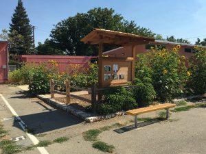 Chavez Elem Garden Program Improvements