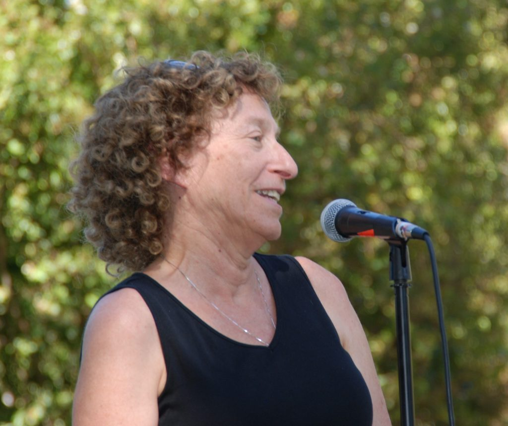 Harriet Steiner, Davis City Attorney