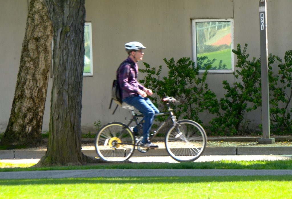 Biking in Davis