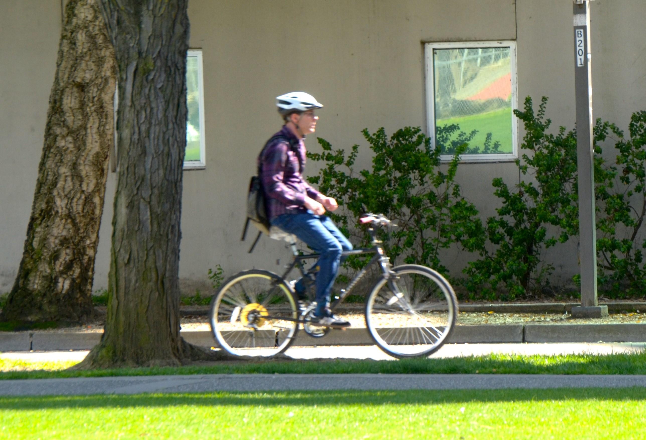 Biking in Davis