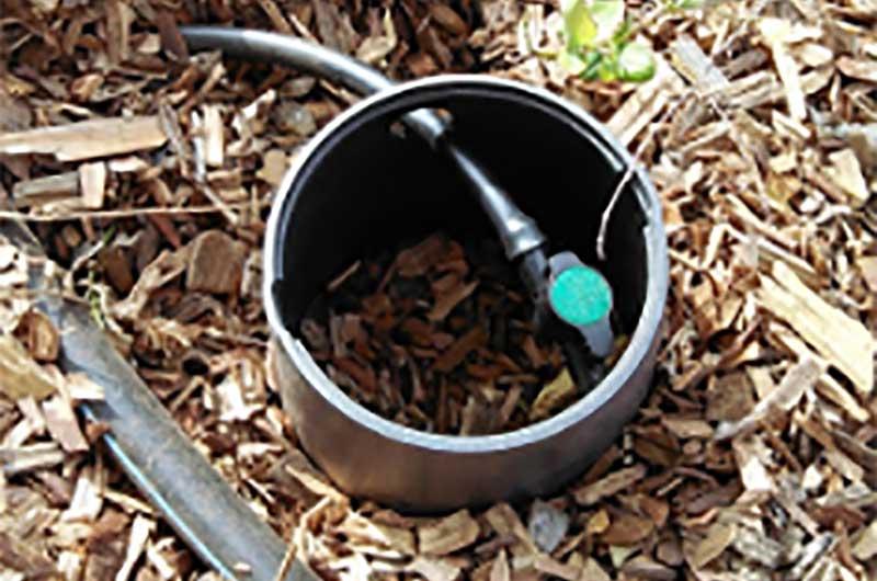 greywater mulch basin