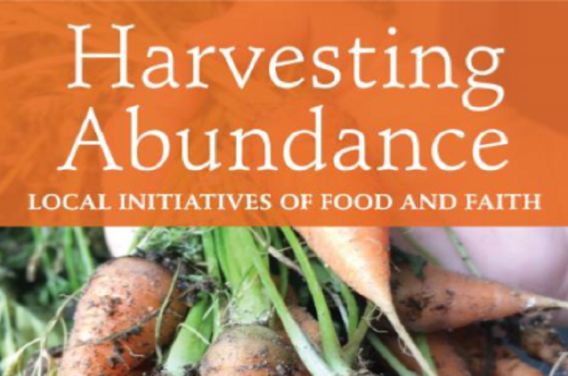 Harvesting Abundance Cool Davis