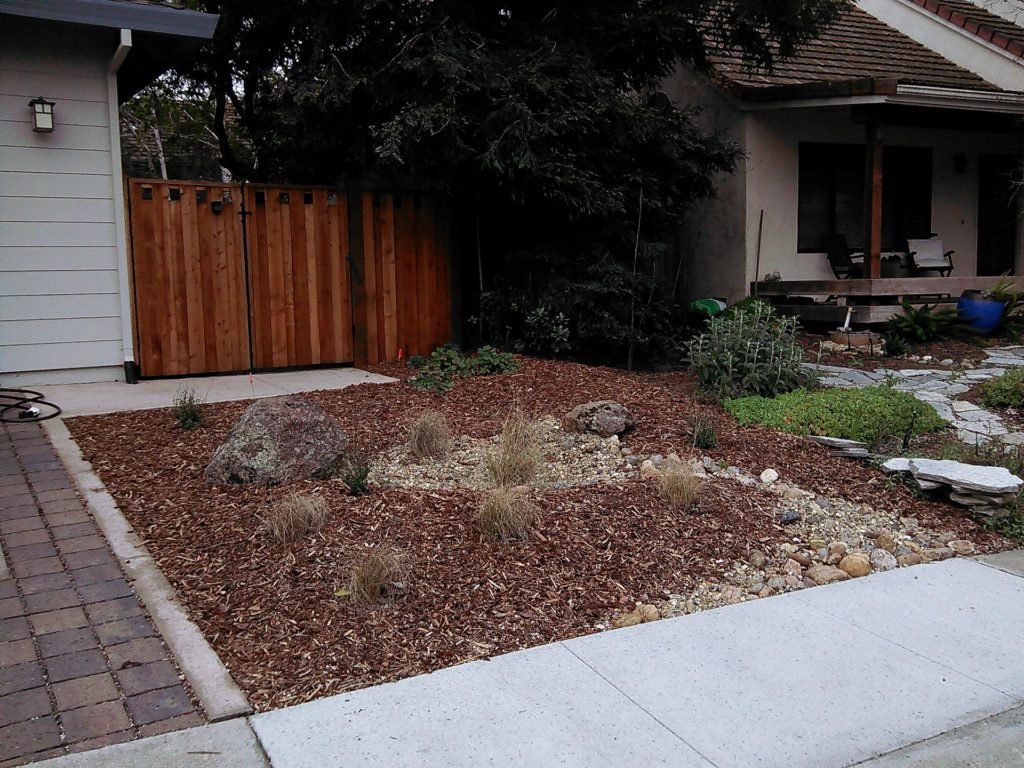 Greywater Water Wise Davis