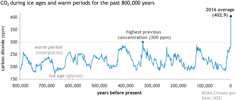 Carbon dioxide levels during glacial and interglacial periods for the past 800,000 years. Credit: NOAA. Data: NOAA NCEI Paleoclimatology Program.