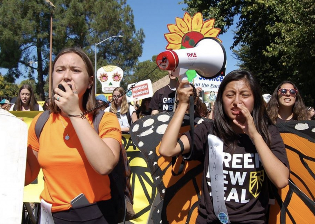 Youth Climate Strike 2019 Amber Marlen