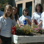Students on Emerson's Earth Team